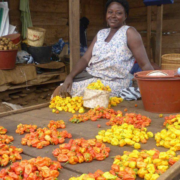 Een spoedcursus in de lokale keuken van Kameroen