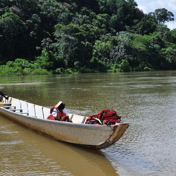 Paradijselijk Suriname: schildpadden spotten in Galibi