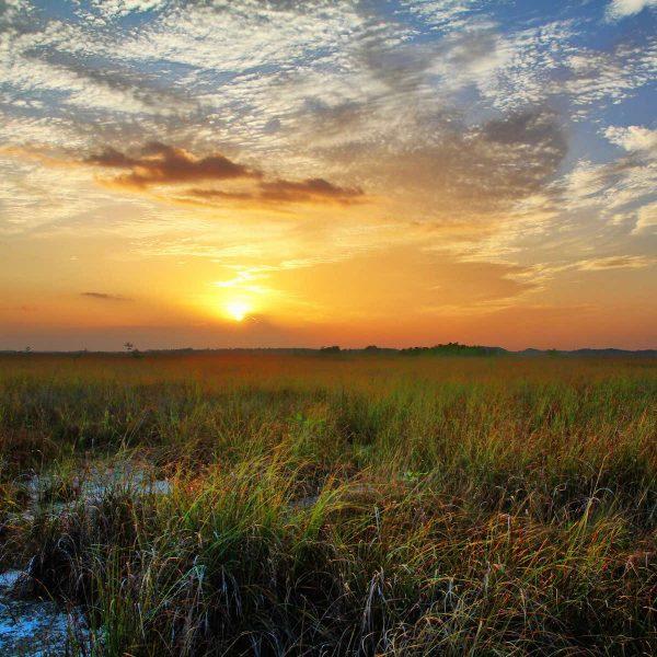 Avontuurlijk Florida: op pad in de Everglades
