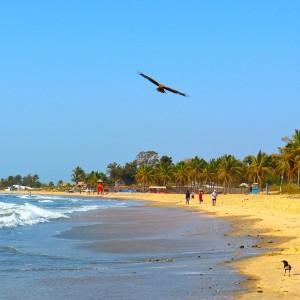 Gambia: het toeristisch bolwerk van Afrika