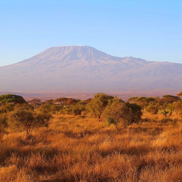 Naar de top van Afrika: de magie van de Kilimanjaro beklimmen