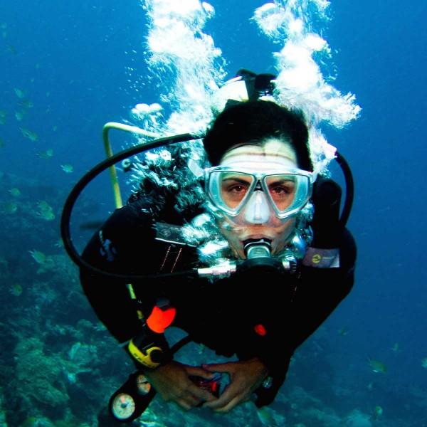 Je PADI halen in Thailand? Lees hier alles over leren duiken op Koh Tao