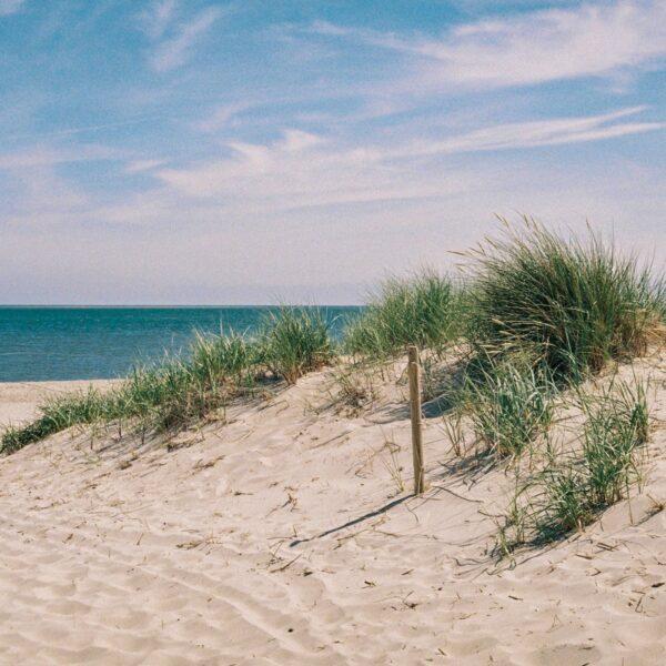 Zon, zee, strand in eigen land