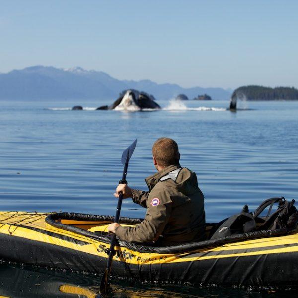 Extreem reisprogramma op Discovery Channel: Deadly Islands