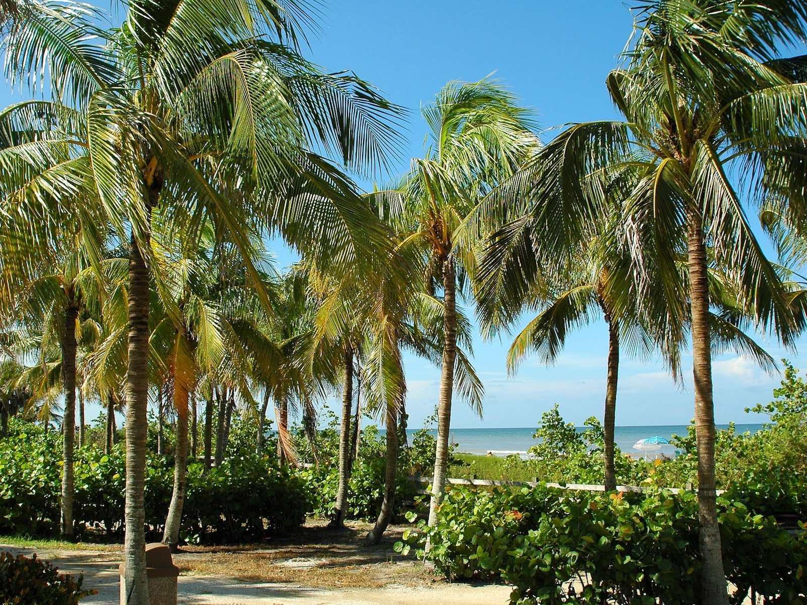 eilandhoppen op de Florida Keys