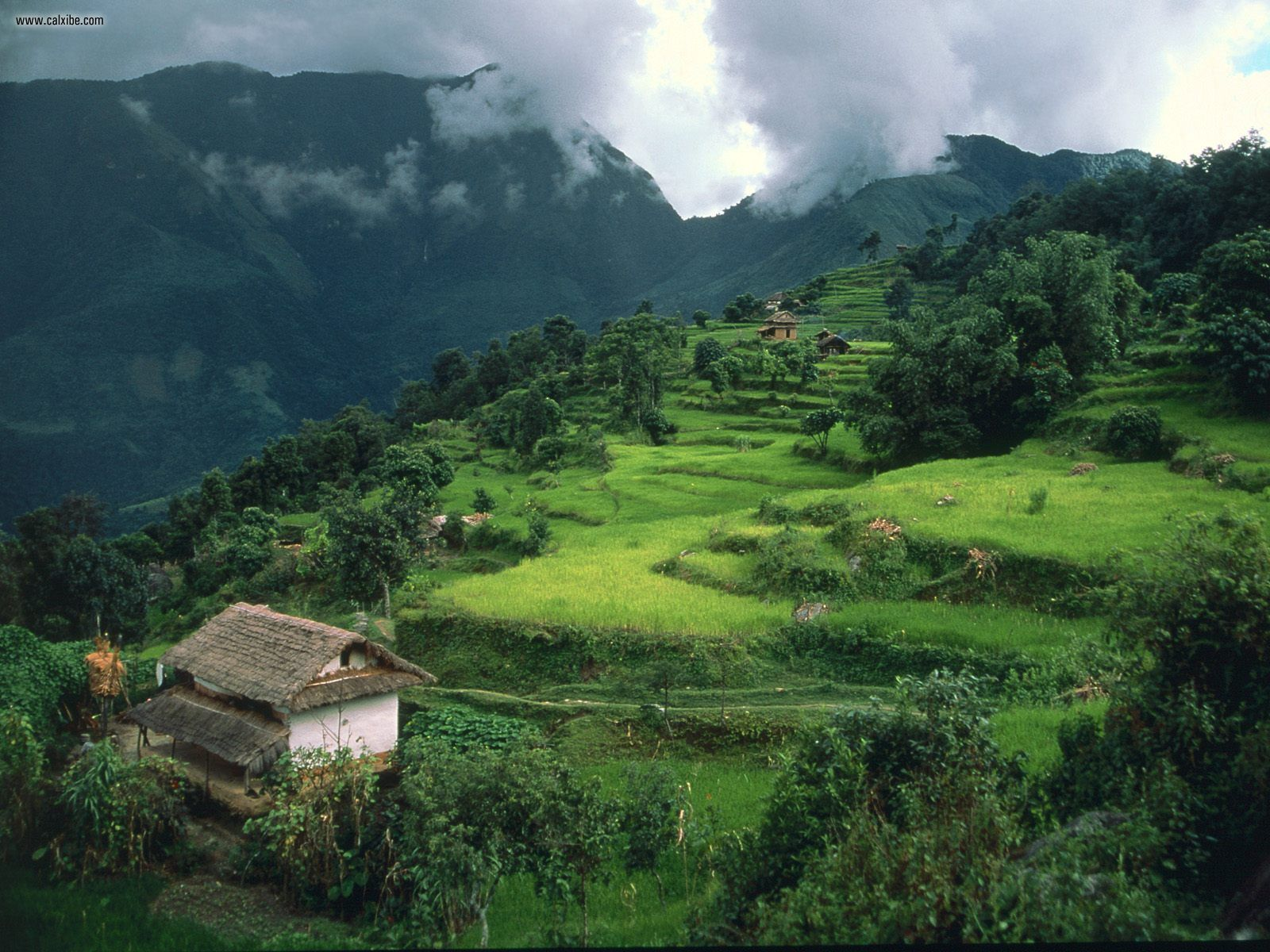 Een taalcursus Nepalees in Pokhara