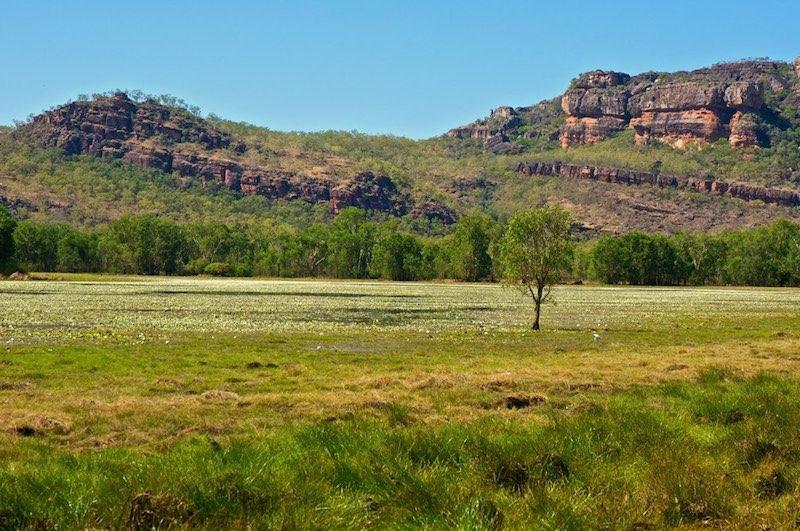 roadtrip door de Outback