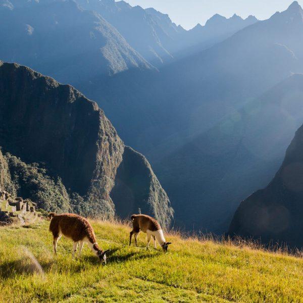 Cuzco: het epicentrum van het Inca rijk