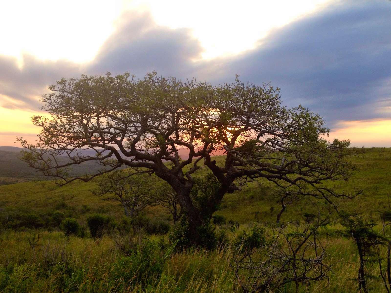Zuid-Afrika in Snapshots