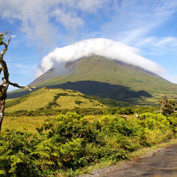 Pico, het groene hart van de Azoren