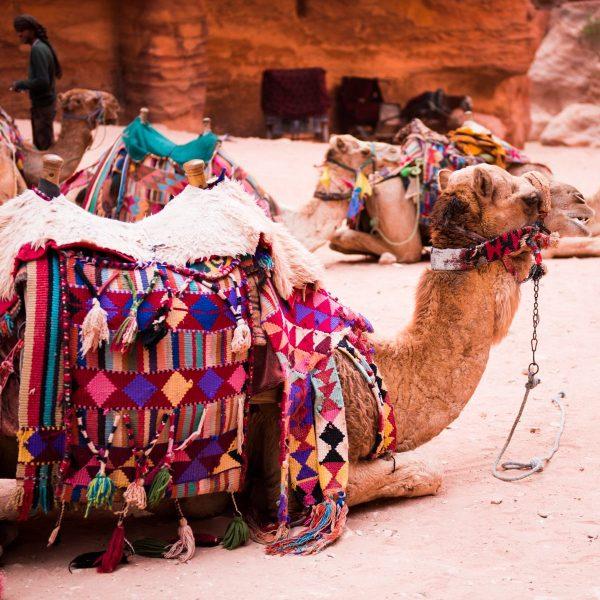 Avontuurlijk Jordanië: 10 x op de bucketlist