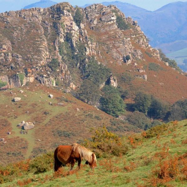Actief Spanje: een outdoor vakantie in Navarra