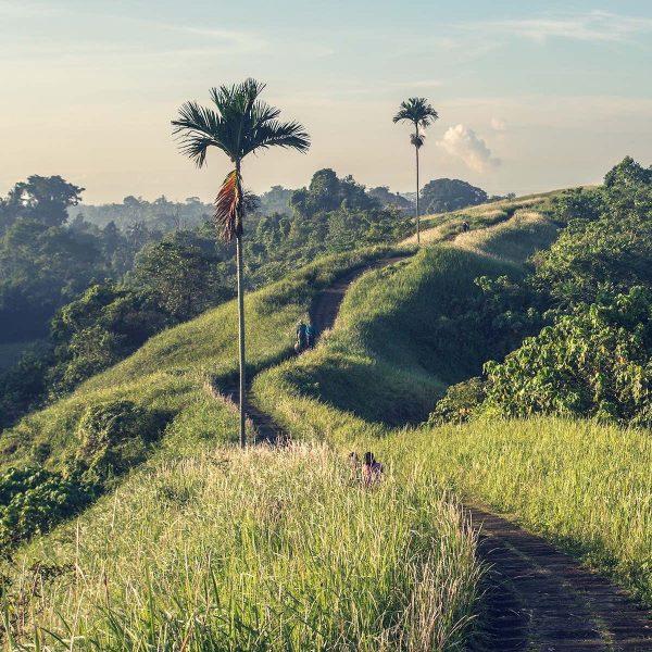 Lokale hotspots op Bali | het leukste van het eiland, zónder de massa