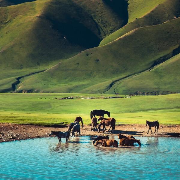 Op reis naar Kyrgyzstan: een roadtrip over onbegane wegen