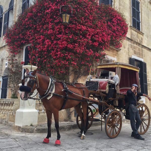 Een roadtrip op Malta langs de allermooiste plekken