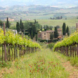 roadtrip in Toscane