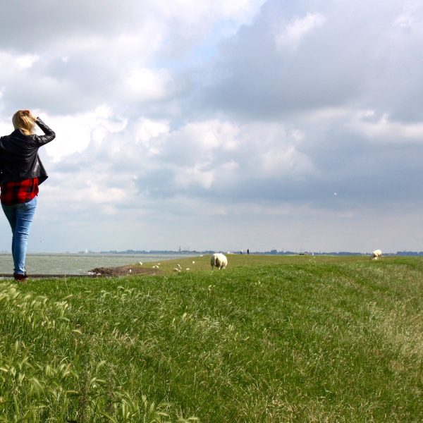 Friesland | Een roadtrip langs de Elfstedenroute