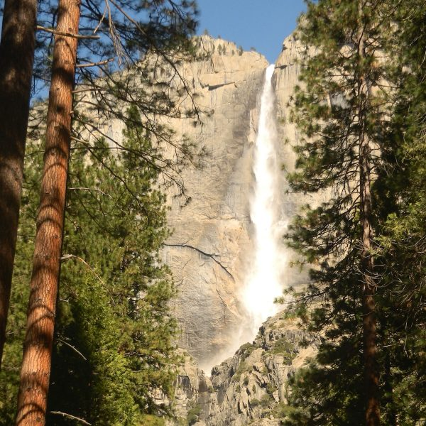 Een roadtrip door de VS: Sequoia National Park