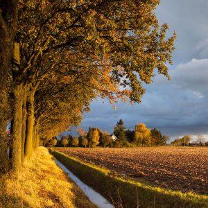 roadtrip door Gelderland