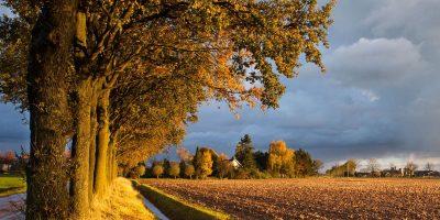 Slow travel in Nederland | Een roadtrip door de Gelderse Streken