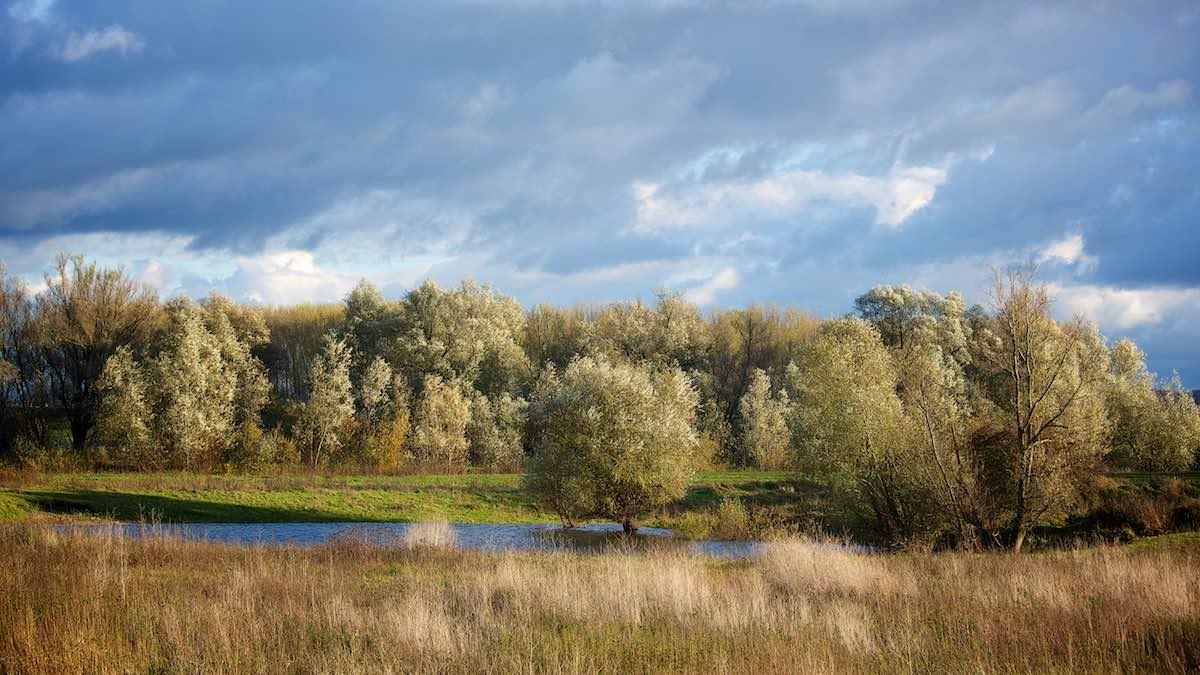 doen in omgeving Nijmegen