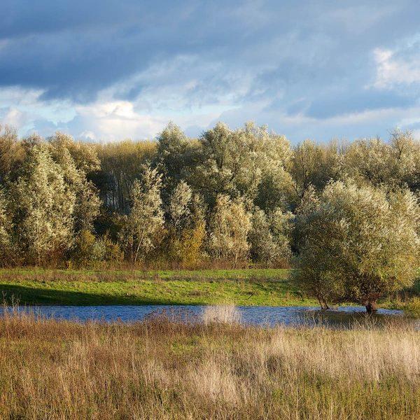 Weg uit de stad: cultuur, natuur en historie in omgeving Nijmegen