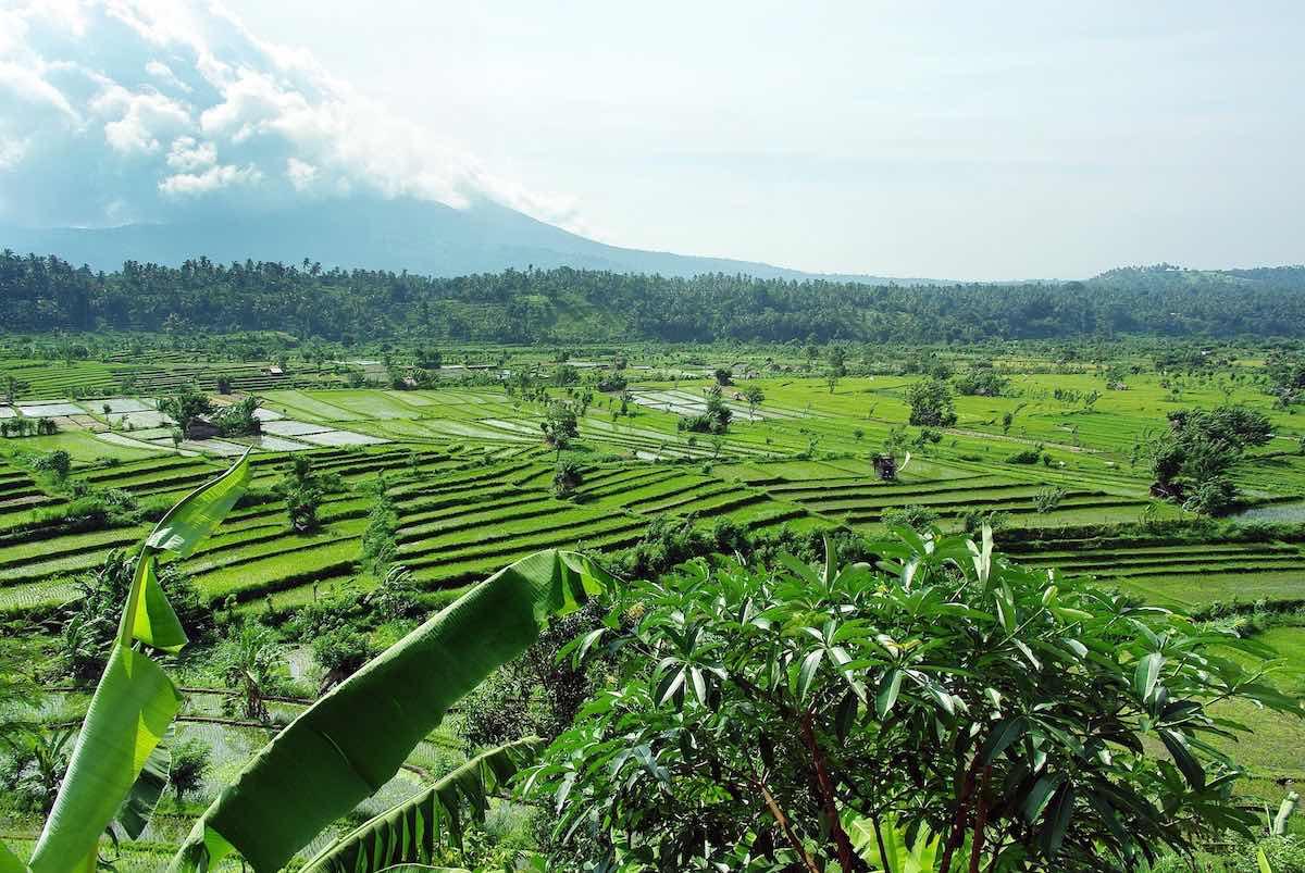 Gunung Batur beklimmen