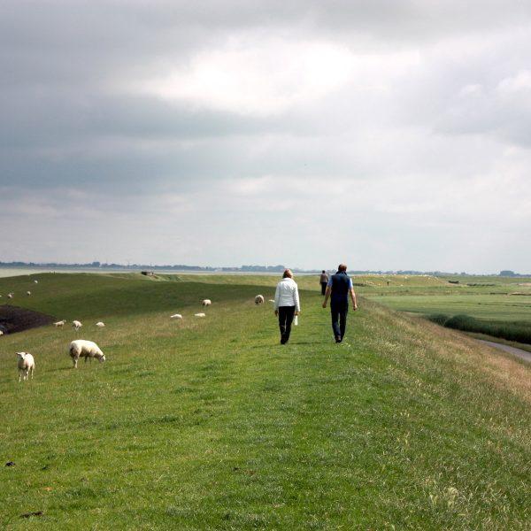 Genieten van de elementen tijdens een actief weekendje Friesland