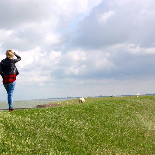 Dagboek van een digital nomad | Vandaag pak ik mijn leven in