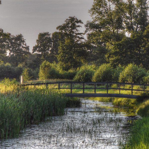 Rust, ruimte en een rijkdom aan historie in de provincie Drenthe