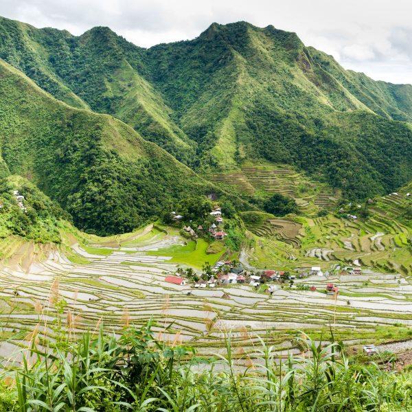 Hiken in de Filipijnen: De ultieme trekking van Banaue naar Batad