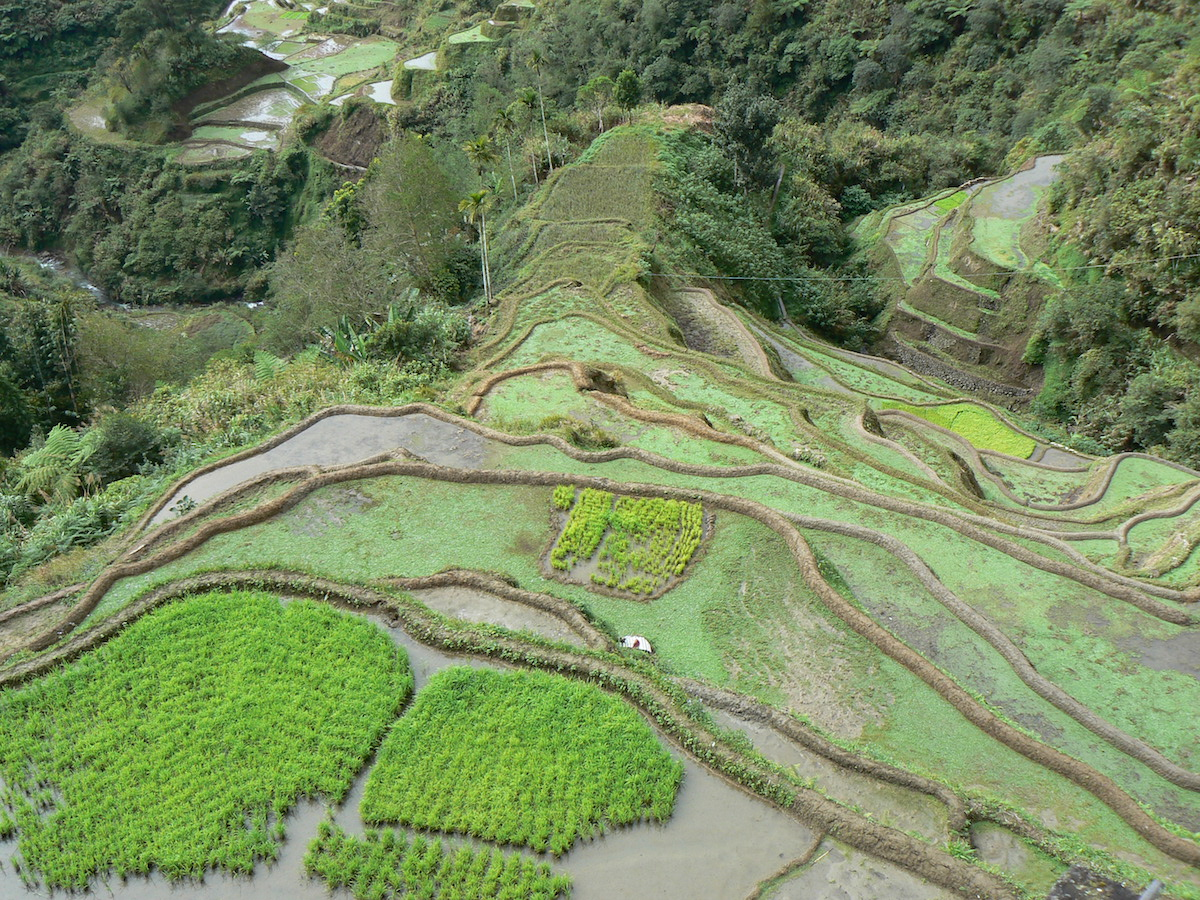 hiken in de filipijnen