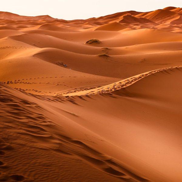 Reisroute Marokko: het mooiste in twee tot drie weken