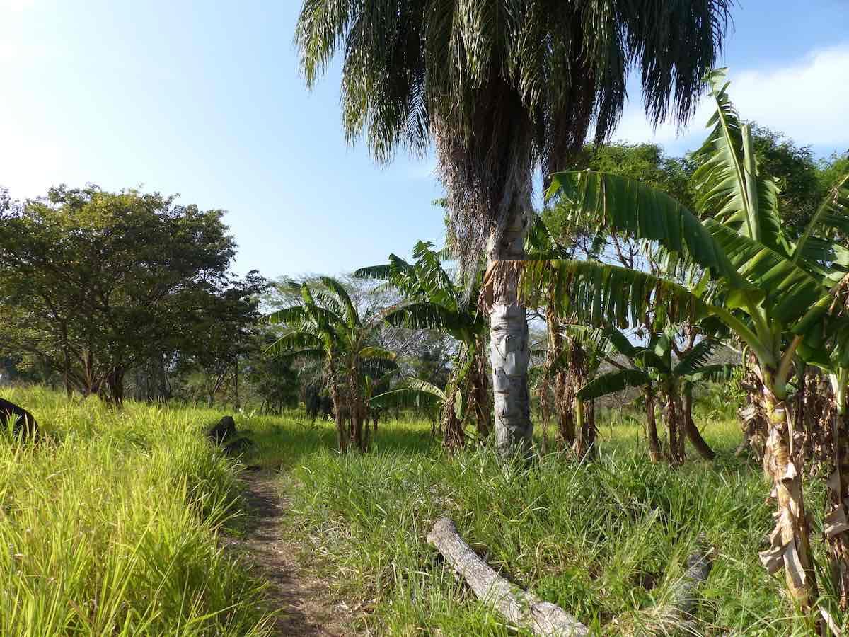 doen op Ometepe
