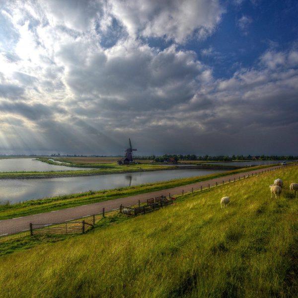Outdoor in eigen land: 5 x doen op Texel voor natuurliefhebbers