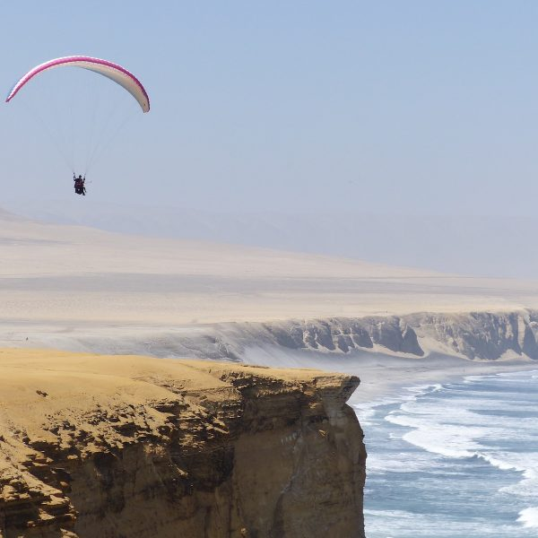 PERU | Wijn, woestijn & wildlife in de regio Ica