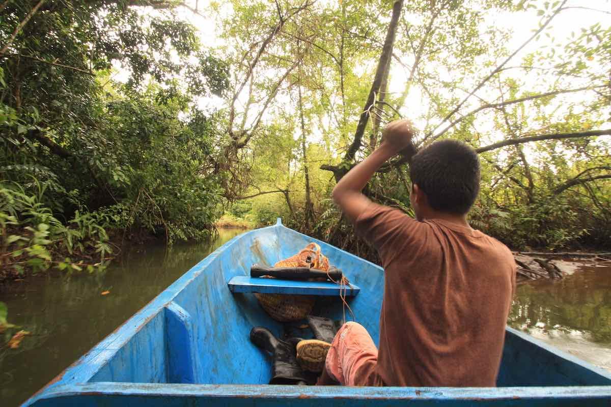 Bastimentos in Bocas del Toro