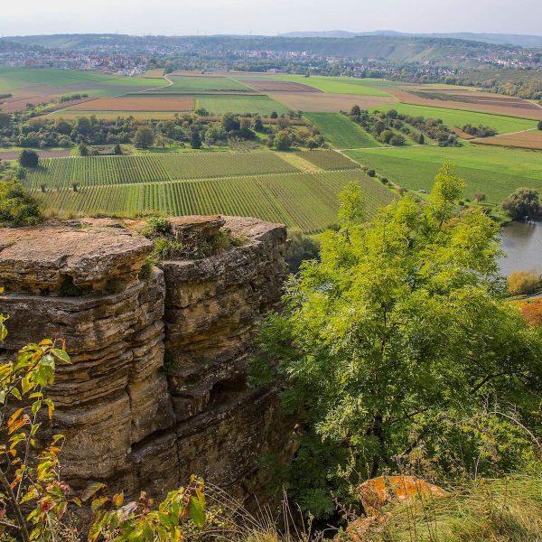 Fietsen langs wijngaarden, kastelen en studentensteden over de Neckartal-Radweg