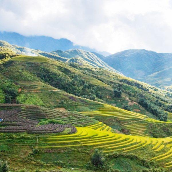 Je visum voor Vietnam: dit is wat je moet weten