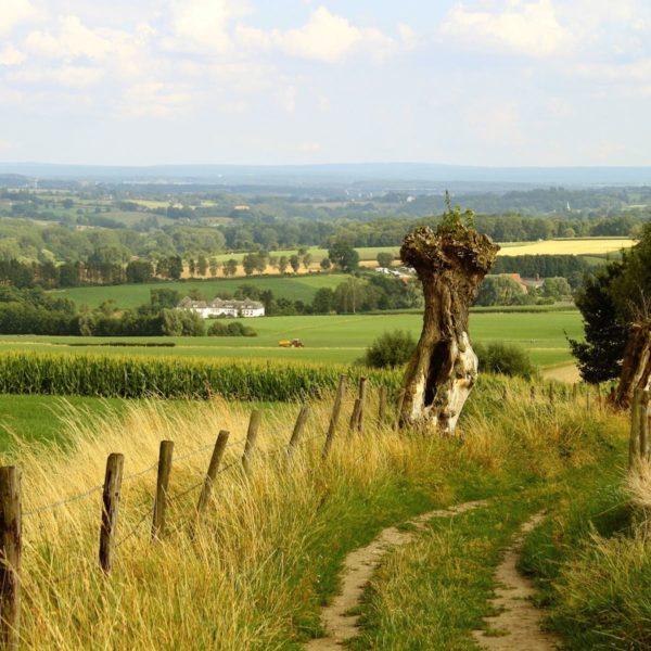 Een weekendje Limburg: inspiratie voor de leukste uitstapjes in de provincie