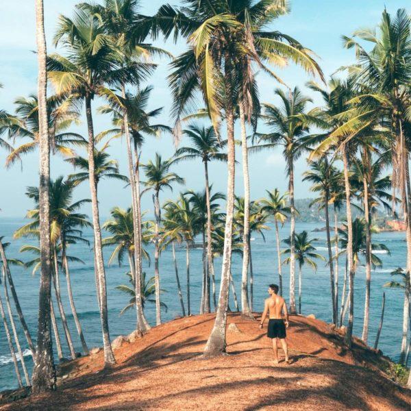 Zonnen, surfen en sfeer: Dit zijn onze favoriete stranden in Sri Lanka