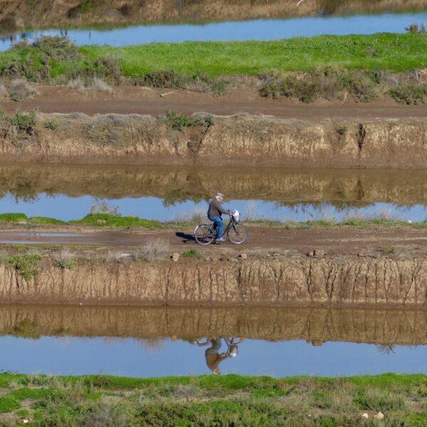Een roadtrip door de Algarve: van het onontdekte oosten naar het wilde westen