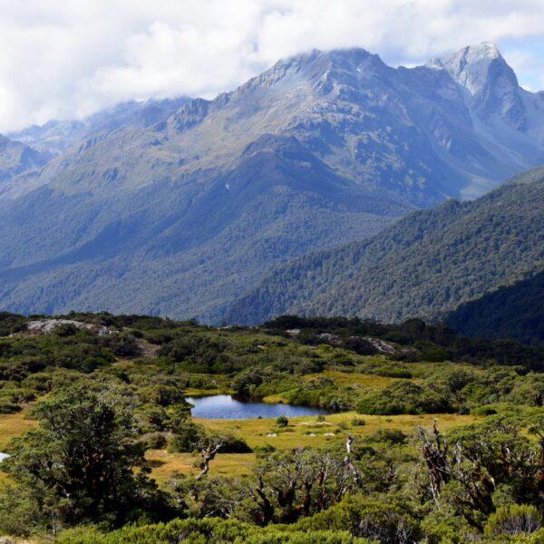 Een 5-weekse reisroute door Nieuw-Zeeland