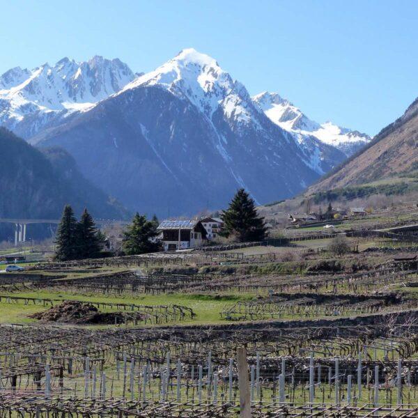 Genieten van de gouden combinatie zon en sneeuw in het Italiaanse Valle d'Aosta