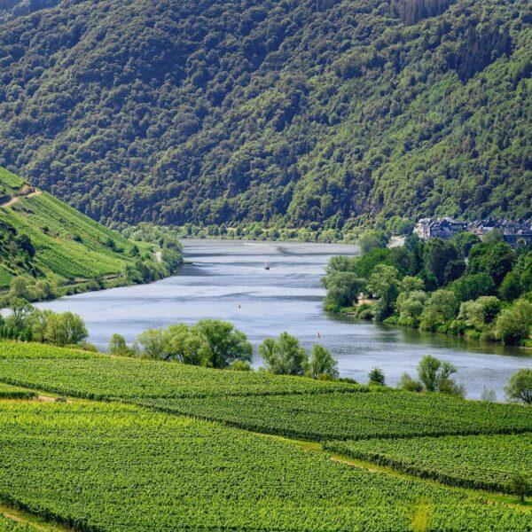 Op vakantie als wijnliefhebber? Wij tippen 6 wijnlanden in Europa!