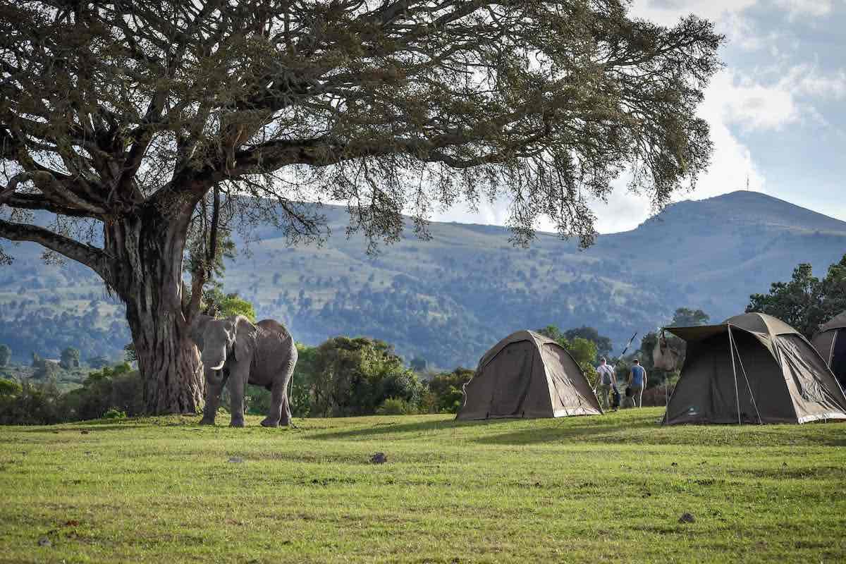budget Tanzania