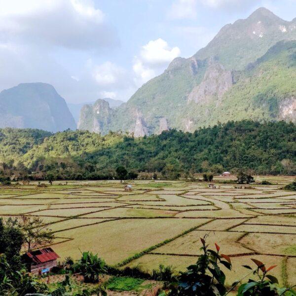 Een rondreis door Laos: langs de mooiste plekken van noord naar zuid