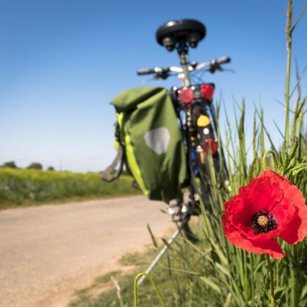 Dit zijn ze: de meest bijzondere en mooiste fietsroutes in België